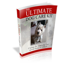 the-ultimate-dog-care-kit-200