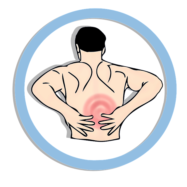 back-pain-2292149_640